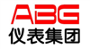 ABG仪表集团