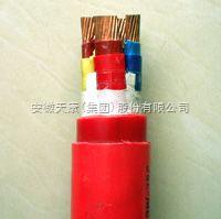 硅橡胶电缆 安徽天康集团