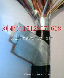 RS4851线对-RS4851线对双重屏蔽#9841型CAN总线通讯电缆