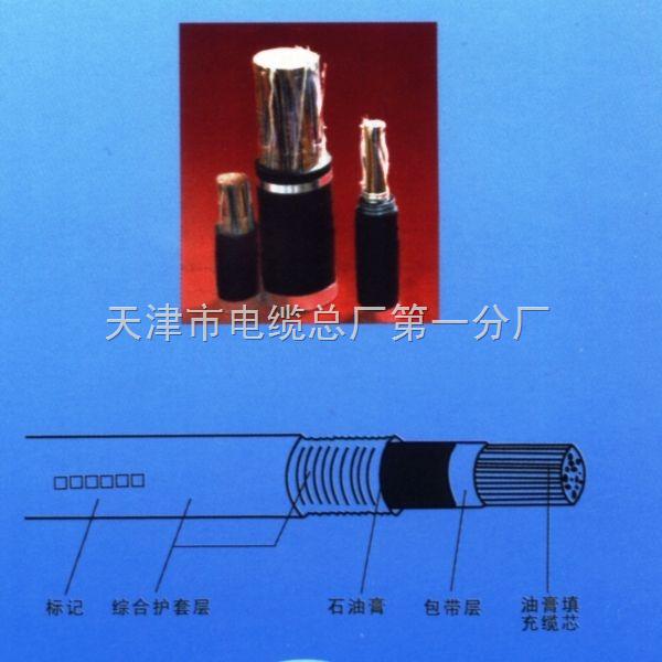 PTYA23 52*1.0铁路信号电缆&天津电缆&