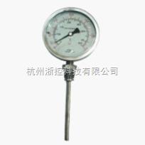 耐震温度计