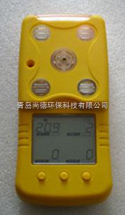 H2檢測儀(氣體檢測儀)