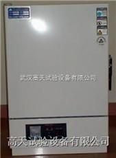 GT-TL-72烘箱,烤箱,精密烤箱