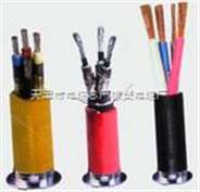 ZR-KVV阻燃控制电缆 标准ZR-KVV电缆