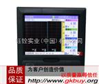 TPR6100十六路彩屏无纸记录仪 温度 压力无纸记录仪