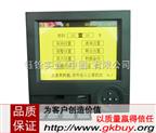 VPR130-RY單色溫度壓力無紙記錄儀